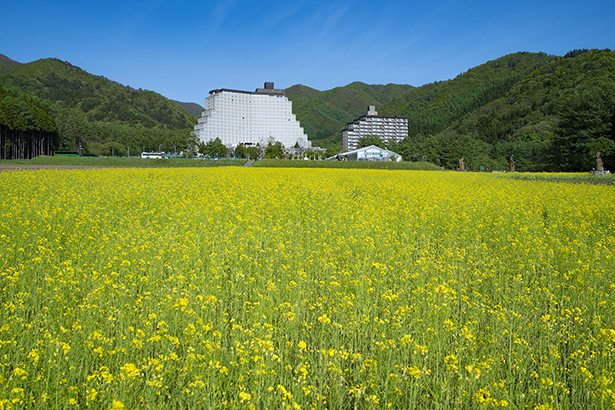 花の王国ふくしま浄土平ビジターセンター