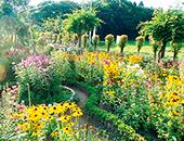 会津エリア愛の花園