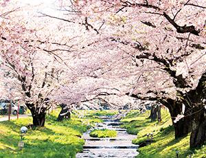 花の王国ふくしま春日八郎おもいで館