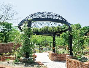 プリンス・ウィリアムズ・パーク  英国庭園