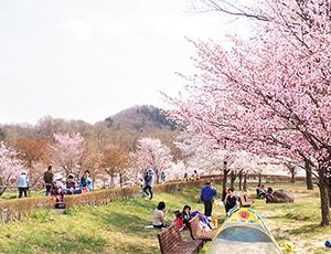 花の王国ふくしま四季の里 緑水苑