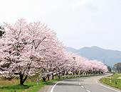 県中エリアいしかわ桜谷「あさひ公園」